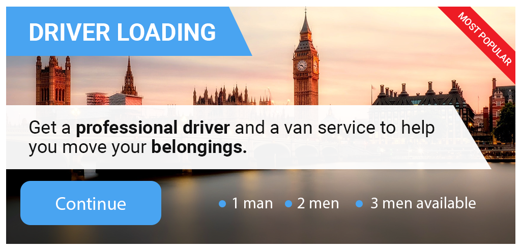 transport executive - man and van service